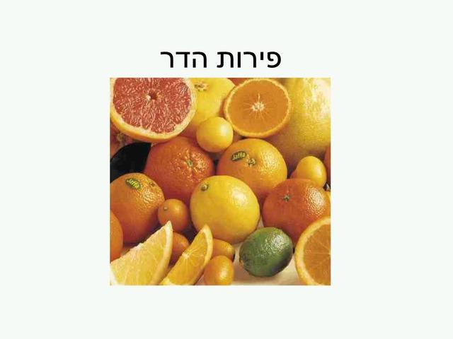 פירות הדר by נעמה נחמני