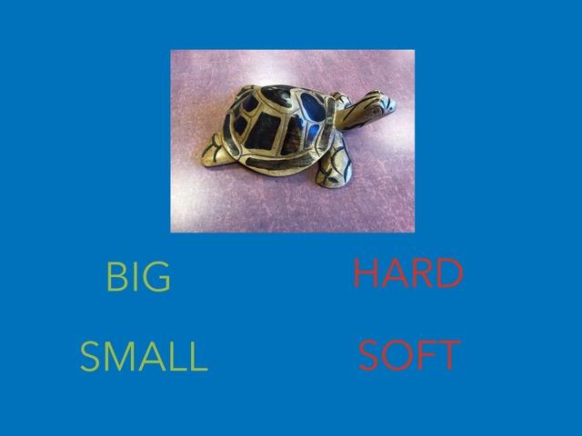 Attributes: Big/Small Hard/Soft by Kristi Duplessis