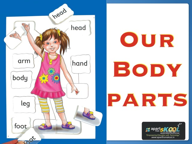 Our Body Parts New by TinyTap creator