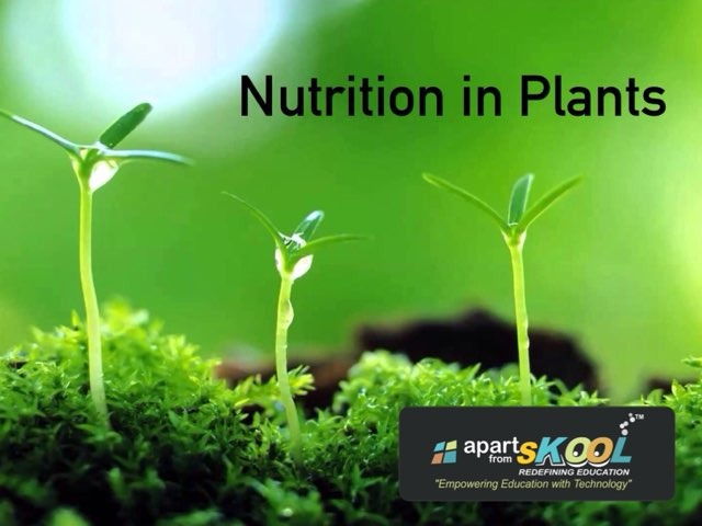 Nutrition In Plants  by TinyTap creator