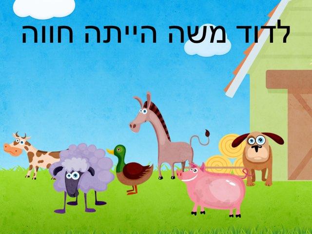 לדוד משה הייתה חווה לוח השתתפות by Hen Kalimian