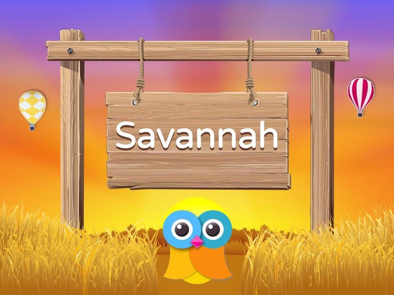 Wikids - Animals: Savannah by Wikids