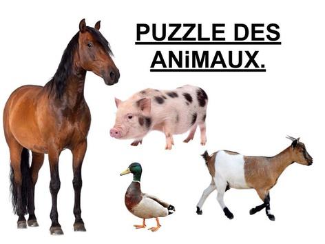 Puzzle Des Animaux 3. by Valerie Escalpade