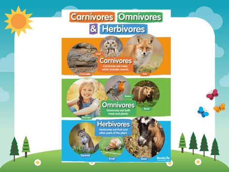 Carnivores, Herbivores And Omnivores  by Laura Simpson
