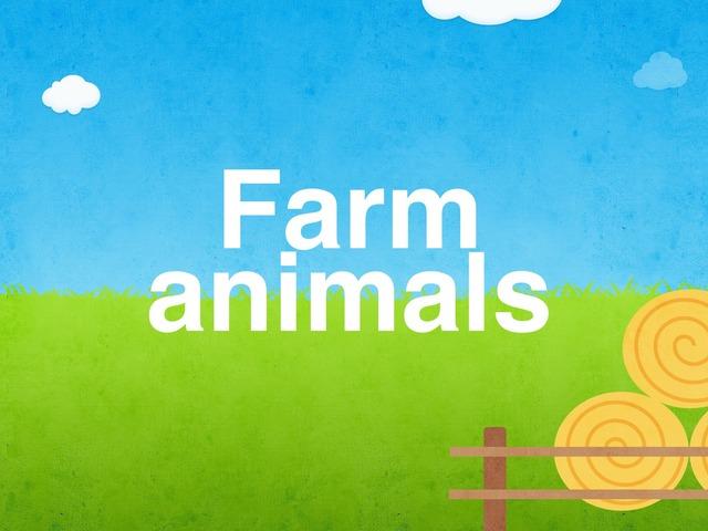 Farm Animals  by mouza