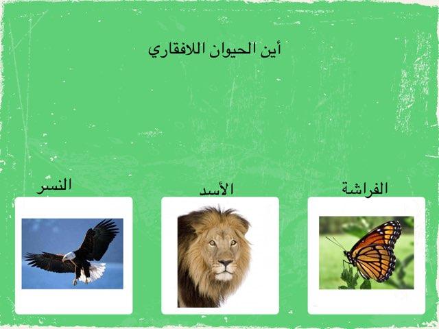 الحيونات ٢ by omabdullah alenazi