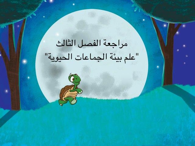 لعبة علم بيئة ش 15 حنان محمد  by Hanan Jan