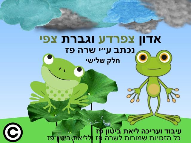 אדון צפרדע וגברת צפי חלק שלישי by Liat Bitton-paz