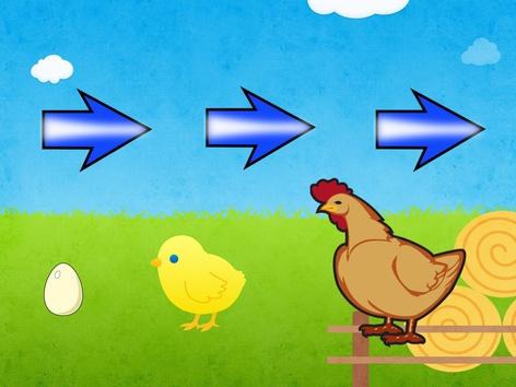 نمو الدجاجة by Nouf Alyafei