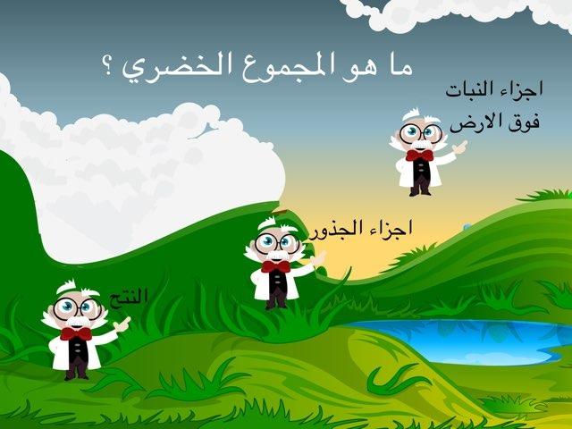 ثامن by Reem Alazmi