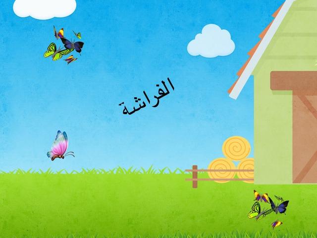 الفراشة by Nedaa Shaban