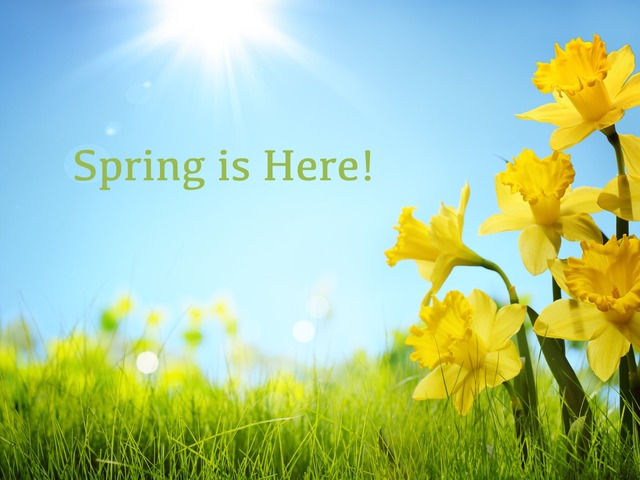 Spring/Summer Multisensory Story by Maleah Stewart