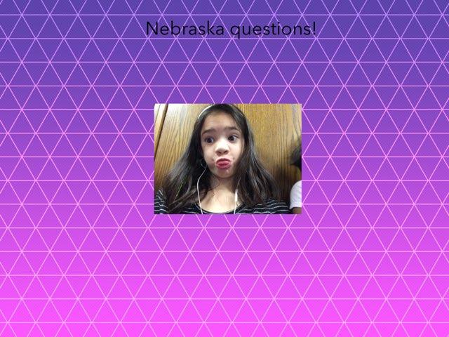 Nebraska Questions  by Caitlin Lao