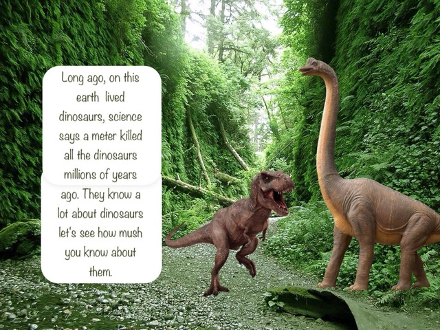 Dinosaurs  by Danica Hoey