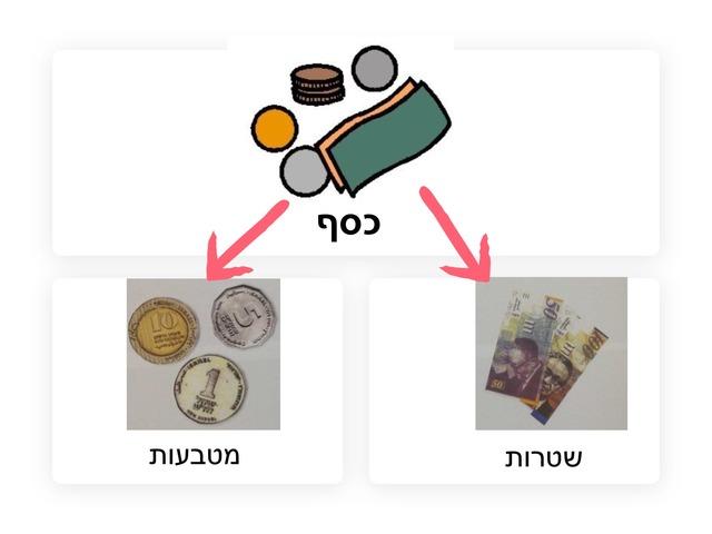 מטבעות by Rotem Pinko
