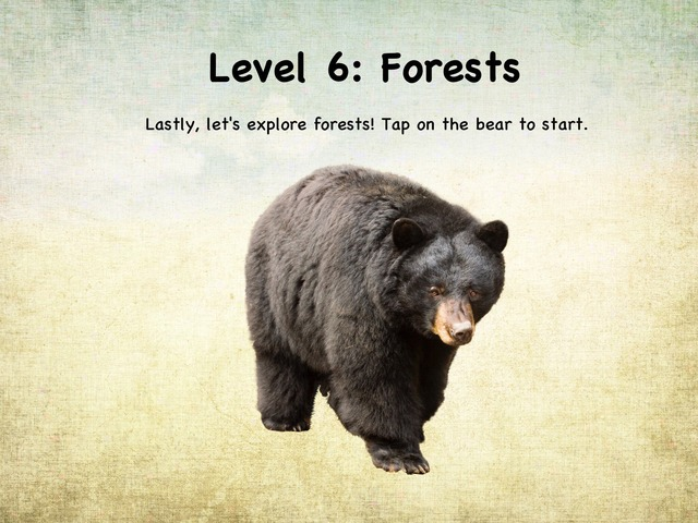 Life In The Biome: Level 6 - Forests by Natasha Sessoms