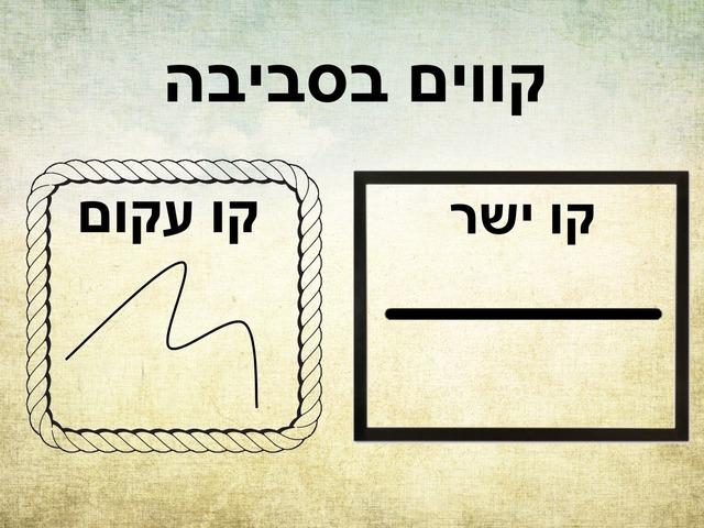 קווים by Beit Issie Shapiro