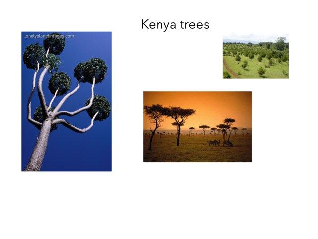 Kenya - Aidan by FarBrook School