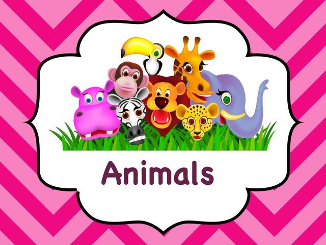 Farm Animals  by بشاير المالكي