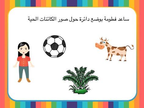 اهمية الهواء by Anayed Alsaeed