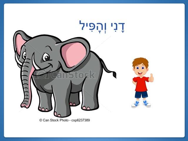 דני והפיל by דליה הילל