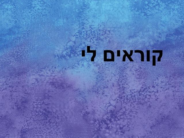 תאיר by dafna cohen
