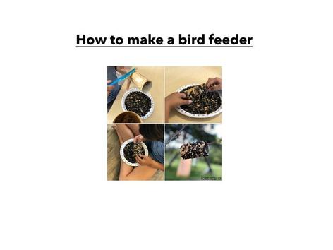 #LS bird Feeder by Laura Simpson