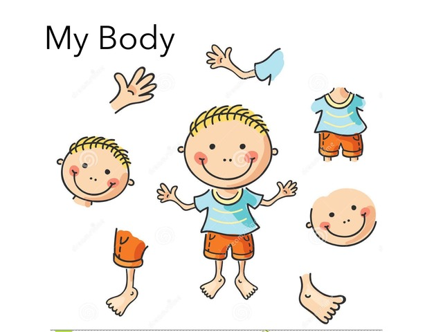 Body by Kristin Meadows