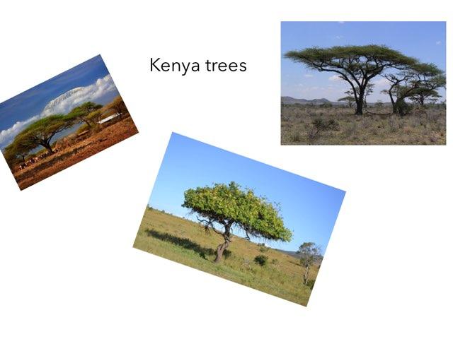 Kenya - Henry by FarBrook School