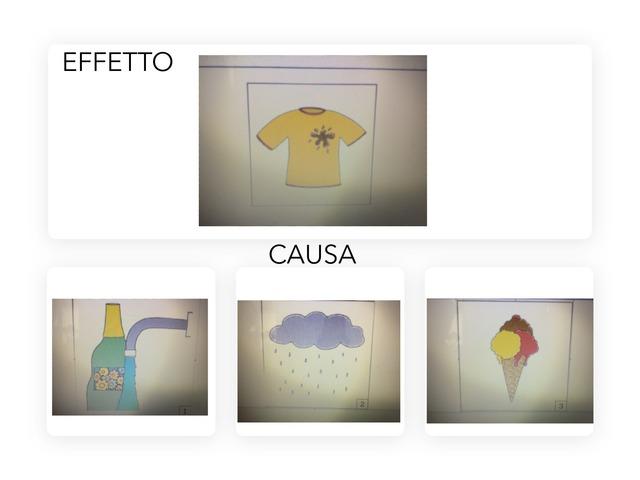 EFFETTO CAUSA by Marco Venezia