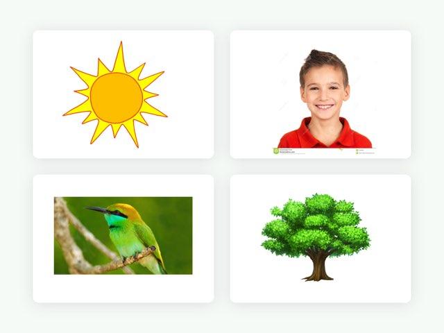 Game 55 Free Games Online For Kids In Kindergarten By Yael Even
