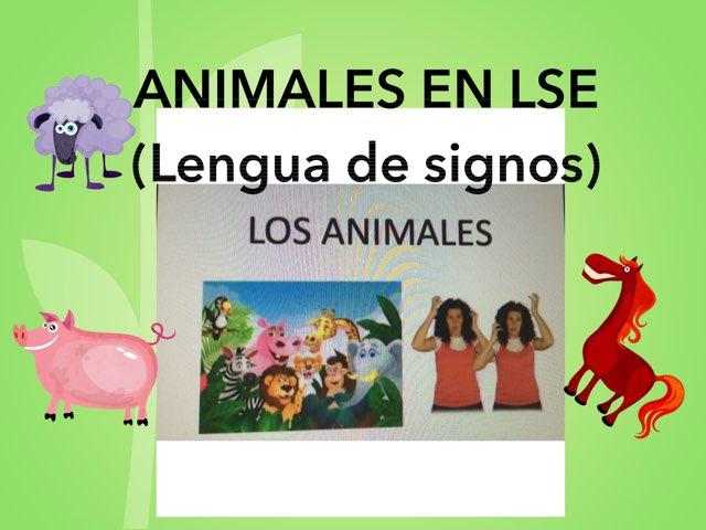 Animales En LSE by Ana Enriquez