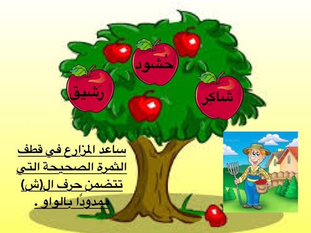 لعبة 151 by Saraab Hamane