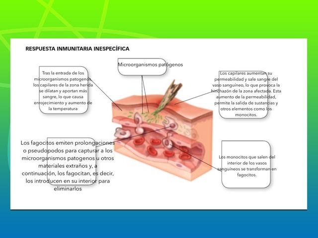 Biología  by Javier Aznar Villagarcia
