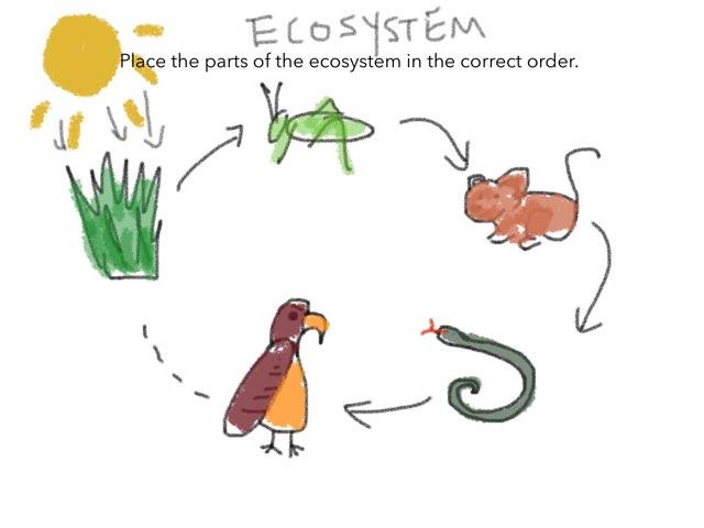 Eco-Game by James Shin-Gay