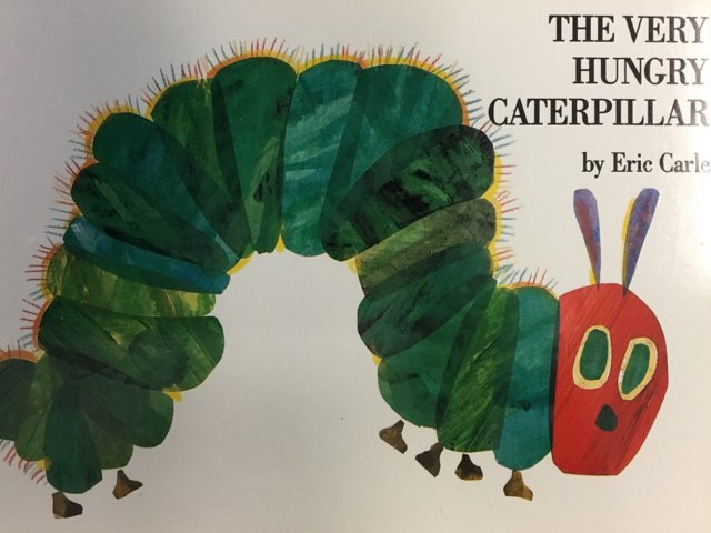 The Very Hungry Caterpillar  by Vision Teacher