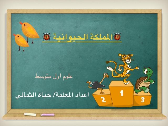 المملكة الحيوانية by Hayat Hb