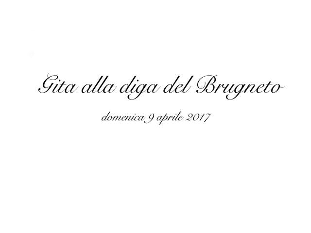 Gioco 2631 by Adriano Scotti