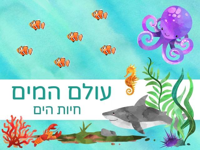 עולם המים: חיות הים by Hadi  Oyna