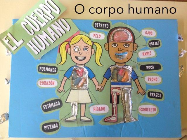 El Cuerpo Humano by Ceipbalaidos Balaidos