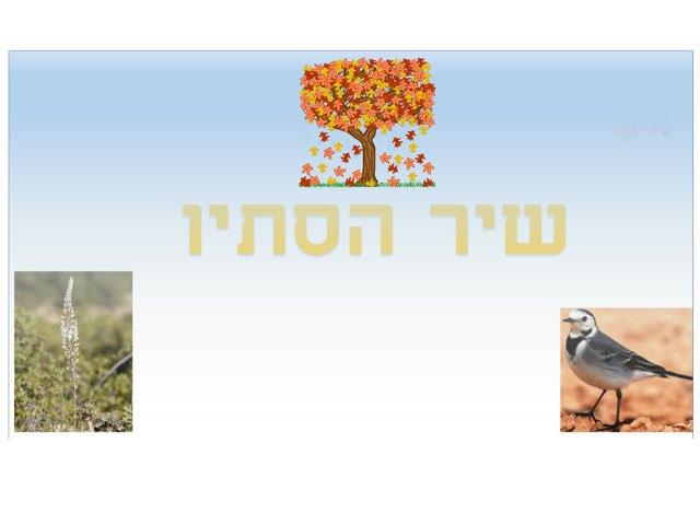 שיר הסתיו by Shy Biber