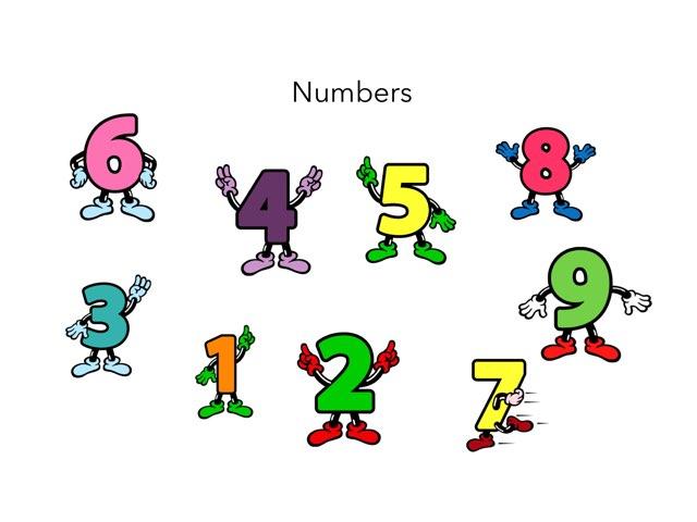 Lestonnac P4 Numbers by Sílvia Saló