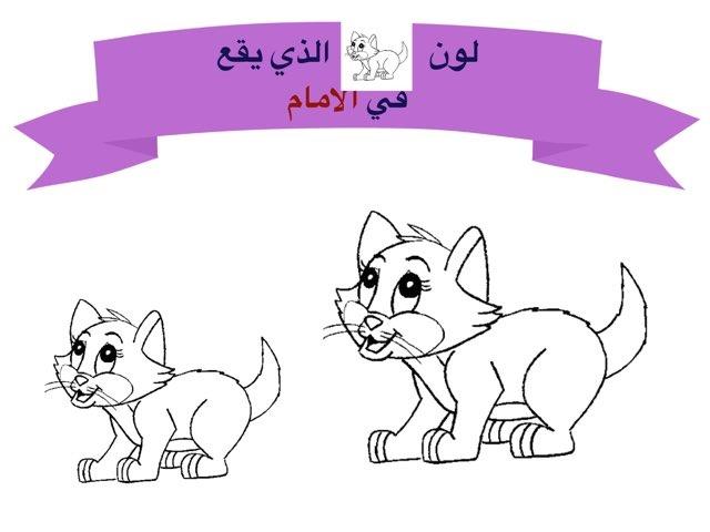 لعبة 55 by Noni Al3nezi