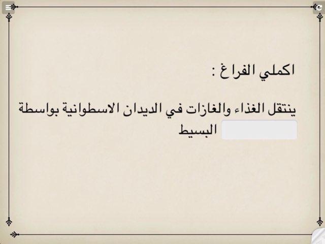 الديدان الاسطوانية ١١ by Hanouf Aloufi