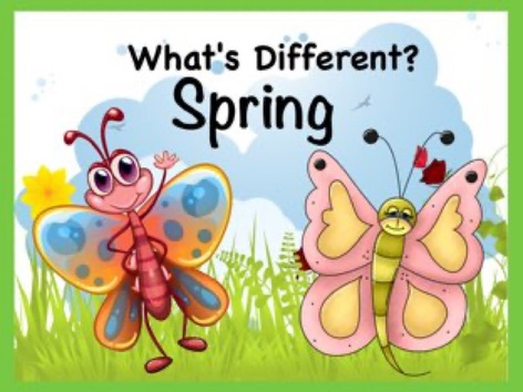 Whats Different - Spring by Ellen Weber
