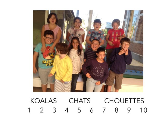 CLASSE DES CHATS EN SEPTEMBRE 2016 by Nora Lambillon