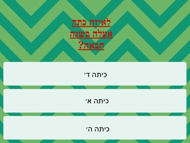 Hecht by Netaaya Schwartz