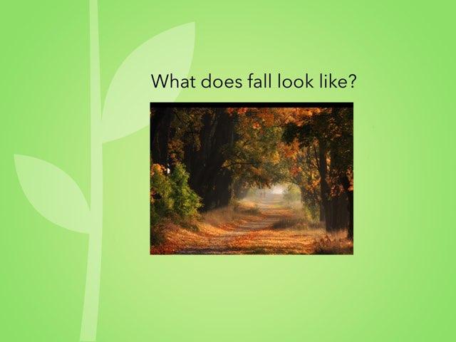 Fall Looks Like by Cheryl Turner