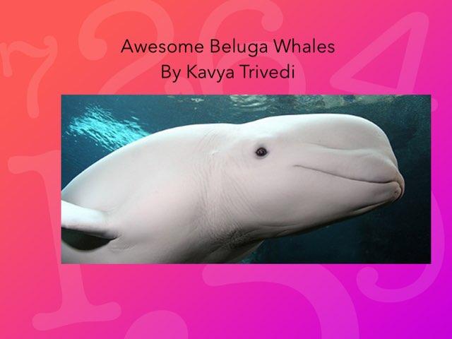 Kavya by Hulstrom 1st Grade