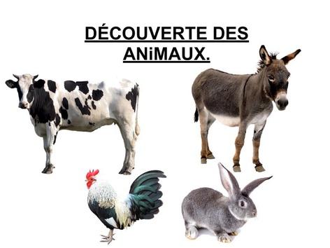 Découverte Des Animaux 2. by Valerie Escalpade
